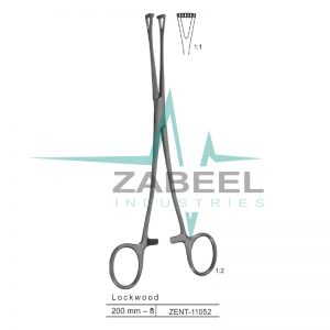 Lockwood Intestinal Holding Forceps Zabeel